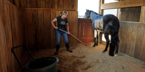 """Keeping a horse barn clean can be difficult, and a constant uphill battle. Cleaning a horse barn is something horse owners rarely look forward to. Horse barns in can often be riddled with unproductive cleaning procedures and temporary fixes; so here is a list of tips and tricks you can implement to maintain a healthy clean horse barn. As one of the top custom horse barn builders in Missouri, we know its like to walk into a messy barn. It is wise to learn to keep your work environment clean, healthy, and productive. This will create a much happier experience for both you and your horse. Remember, the horse barn is the horse's home. As my mother used to remind me regarding keeping my room clean…""""Clean and tidy makes you mighty, but drab and dreary makes you weary."""" I don't speak horse very fluently, but I would imagine that horses don't enjoy an untidy stall that doesn't cleaned very often or has clutter in it that they have to maneuver around. So here are a few housekeeping items to keep in mind whether you have an existing barn or you are seeking to have a custom horse barn builder to make your barn dreams come true: Stall Mats & Bedding Checks Stall mats can be pricey, but they do cut down on cost and time usually spent cleaning stalls by hand. They also help regulate the amount of bedding regularly used. When choosing your bedding, make sure you purchase the most absorbent type available. Bedding made of wood pellets, peat moss, or shredded newspaper is much more absorbent and contain less dust, mold, or other debris than traditional bedding does. Finding bedding that helps regulate the moisture on the ground will help ensure a healthier barn atmosphere for both you and your animals. Many people like to use cedar shavings because of the fresh cedar scent. While this is a nice option, they are not always economical. The thing to remember here is to use the best product for your budget that your horse responds well to. Remember, this is your horse's bedding…YOU aren"""